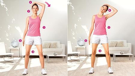 Extension de la tête : exercice pour étirer les muscles latéraux du cou - Extension de la tête : exercice pour étirer les muscles latéraux du cou