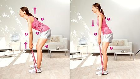 Flexions du tronc : exercice pour renforcer les muscles du bas du dos